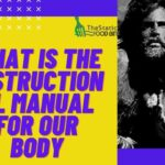 What Is The Instructional Manual For Our Body