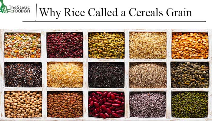 Why Rice Called a Cereals Grain-min