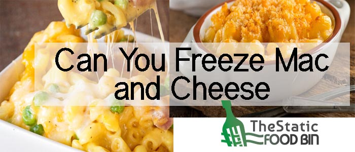 Can You Freeze Mac and Cheese