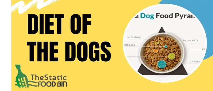 Diet of the Dogs