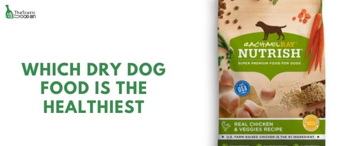 Best dry dog food for weight loss UK