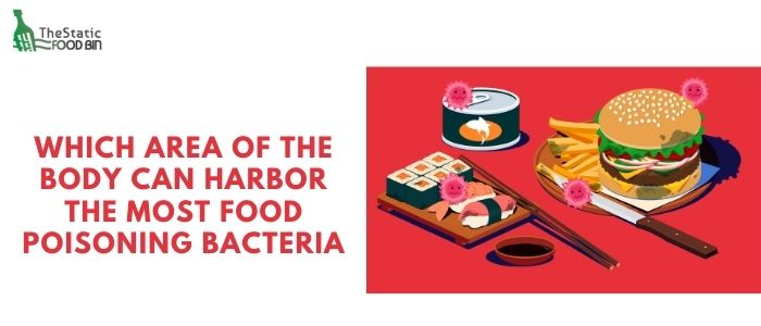 Which area of the body can harbor the most food poisoning bacteria